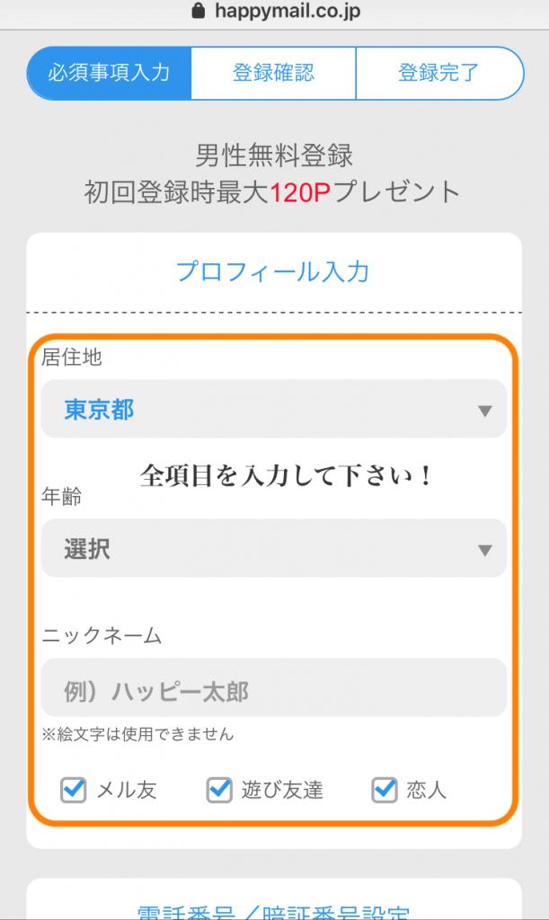 ハッピーメールを登録するために個人情報を入力する画面